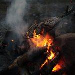Wildnis_fire_habsauchgrößer
